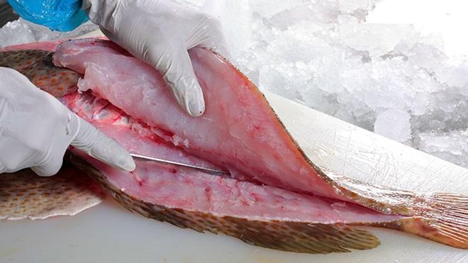 mano che sfiletta pesce