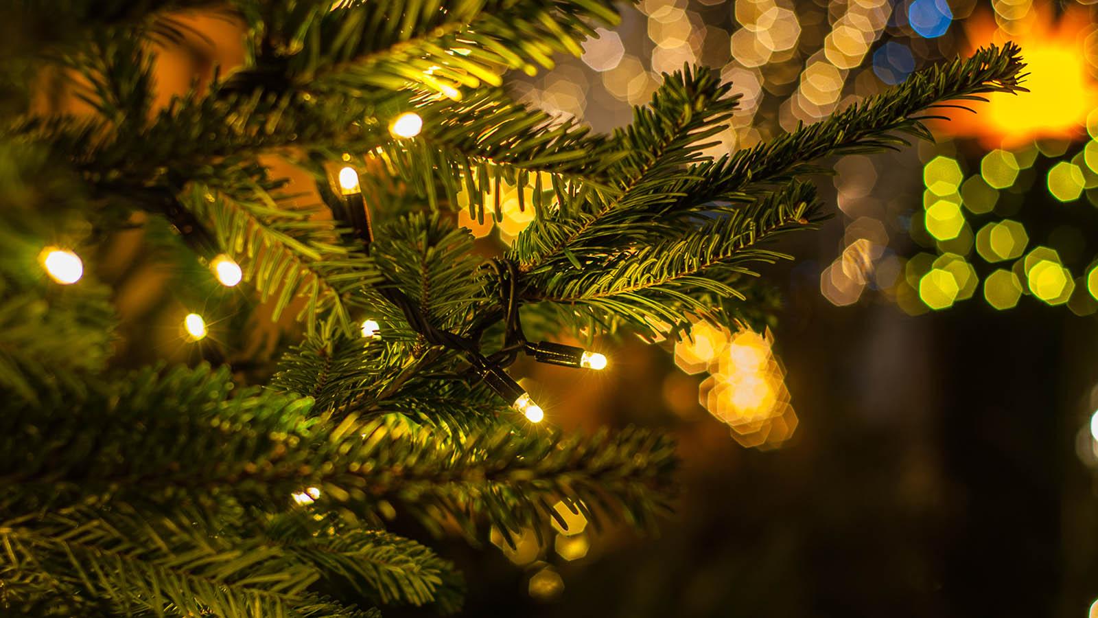 Albero Di Natale Hd.Come Scegliere Le Luci 10 Consigli Per Un Natale Sicuro Altroconsumo