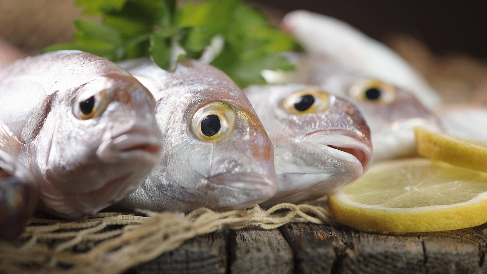 Pesce in tavola ecco come riconoscere quello fresco for Pesci da laghetto mangia zanzare